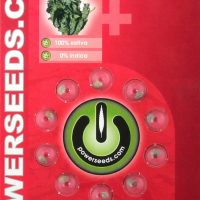 Powerseeds: Power Haze