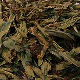 Mexican Tarragon 10 gr.